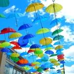 いま濡れない傘がアツい!!魔法の傘を今すぐ手に入れるべし!