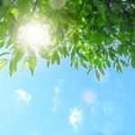 春の紫外線も厄介!恐ろしい「光老化」から肌を守るUVケア3ステップ