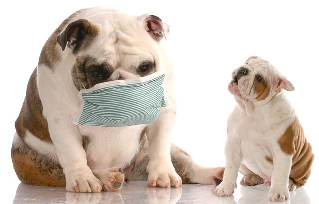 肺炎は悪化する前に適切な治療を!