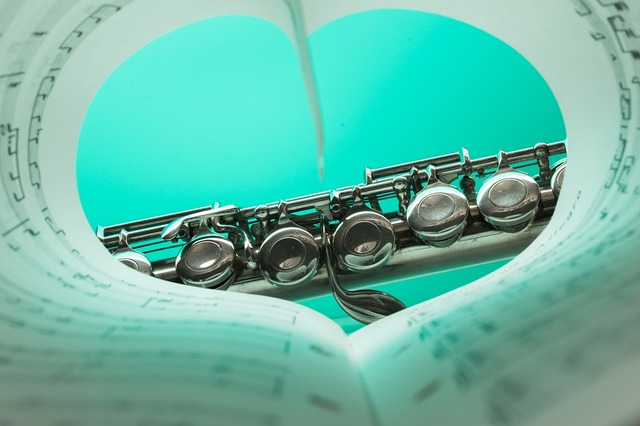 無料の写真: フルート, 音楽楽器, 銀メッキ, 音楽, 楽器, 音楽を - Pixabayの無料画像 - 1427654