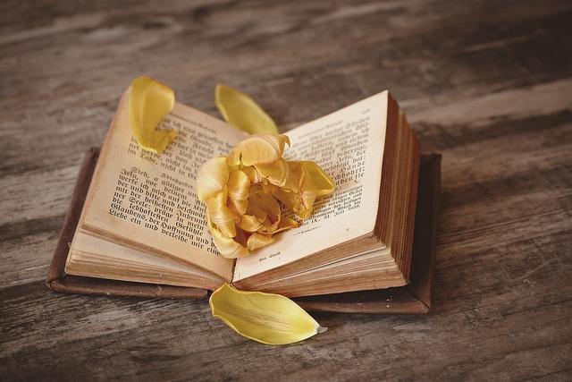 無料の写真: 本, オープン, 登板, 本のページ, ページ, フォント, 花 - Pixabayの無料画像 - 1291164