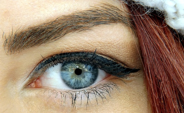 無料の写真: 目, ブルー, アイリス, 遺伝子, 魅惑的です, メイク, 美容 - Pixabayの無料画像 - 1159326