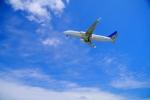 「飛行機」に関する写真|写真素材なら「写真AC」無料(フリー)ダウンロードOK