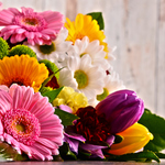 看護師仲間に贈りたい!プレゼントの定番・花束にこめた「花言葉」