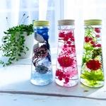 大人気のハーバリウムとは。簡単・手間なしでかわいいお花を長期保存