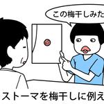 【看護師あるある】看護師のリアルを大公開!〜泌尿器科看護師あるあるその2〜