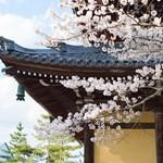2泊3日で京都を満喫する旅 ②南禅寺を目指せ!