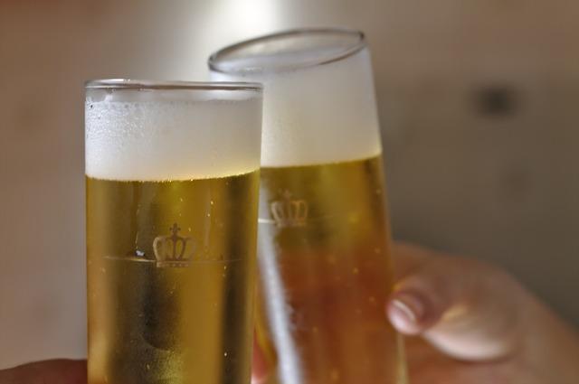 無料の写真: ビール, パーティー, トースト, 楽しい, 友人同士, 乾杯, 風邪 - Pixabayの無料画像 - 375974