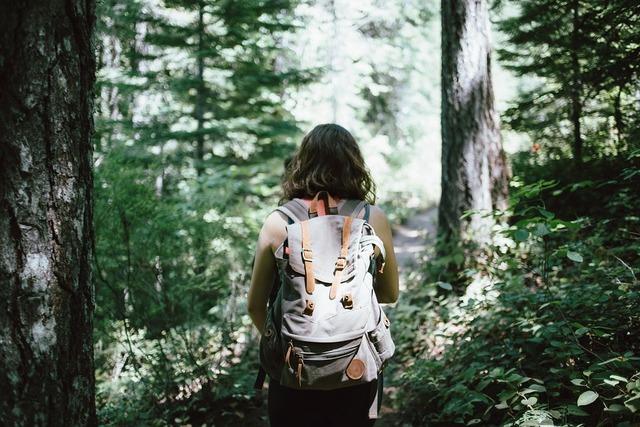 無料の写真: ハイカー, バックパッカー, ハイキング, 林, 自然, 若いです - Pixabayの無料画像 - 918704