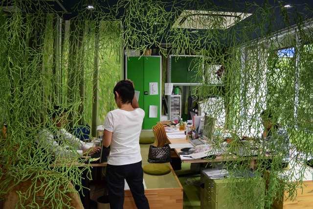 開放感のあるゆったりとしたオフィス