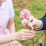 未婚率が高いってホント?看護師の恋愛事情