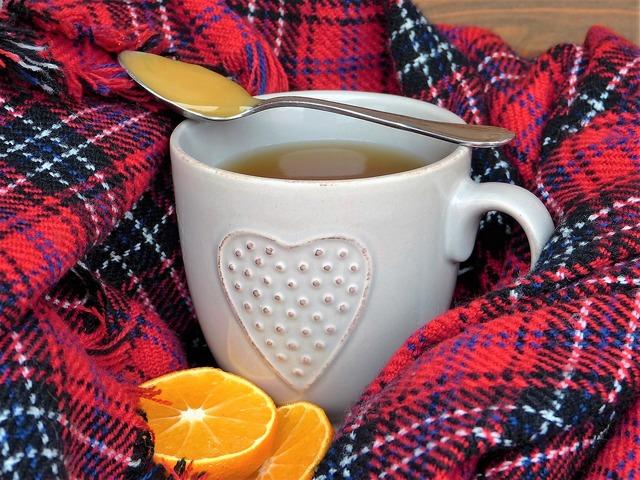 無料の写真: 嗅ぐ, 風邪, 健康, 免疫, すぐ良く, 病気, ウイルス - Pixabayの無料画像 - 1768463