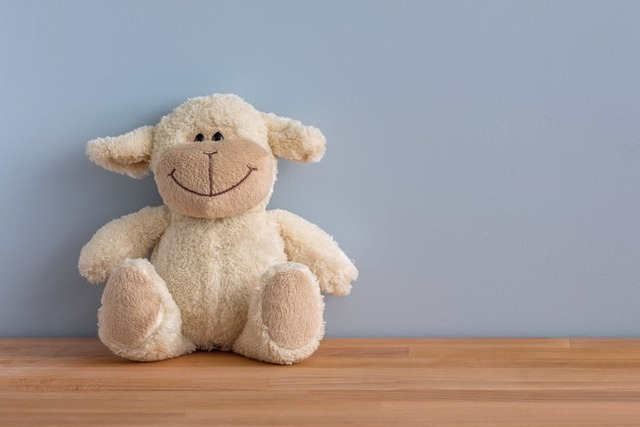Free stock photo of cuddly toy, happy, smile