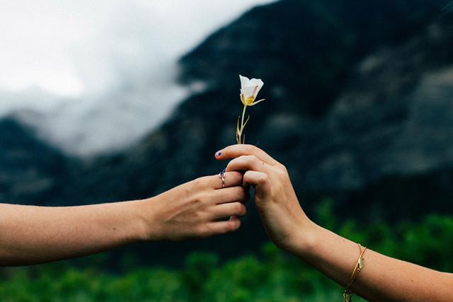 [フリー写真] 一輪の花をプレゼントする手でアハ体験 -  GAHAG | 著作権フリー写真・イラスト素材集
